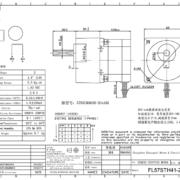 57BHH41-281A-2GN15K FL57STH41-2804AG15