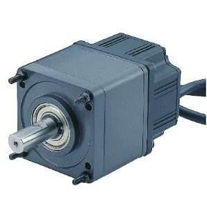 Мотор редуктор IG-80WGM41 1/80